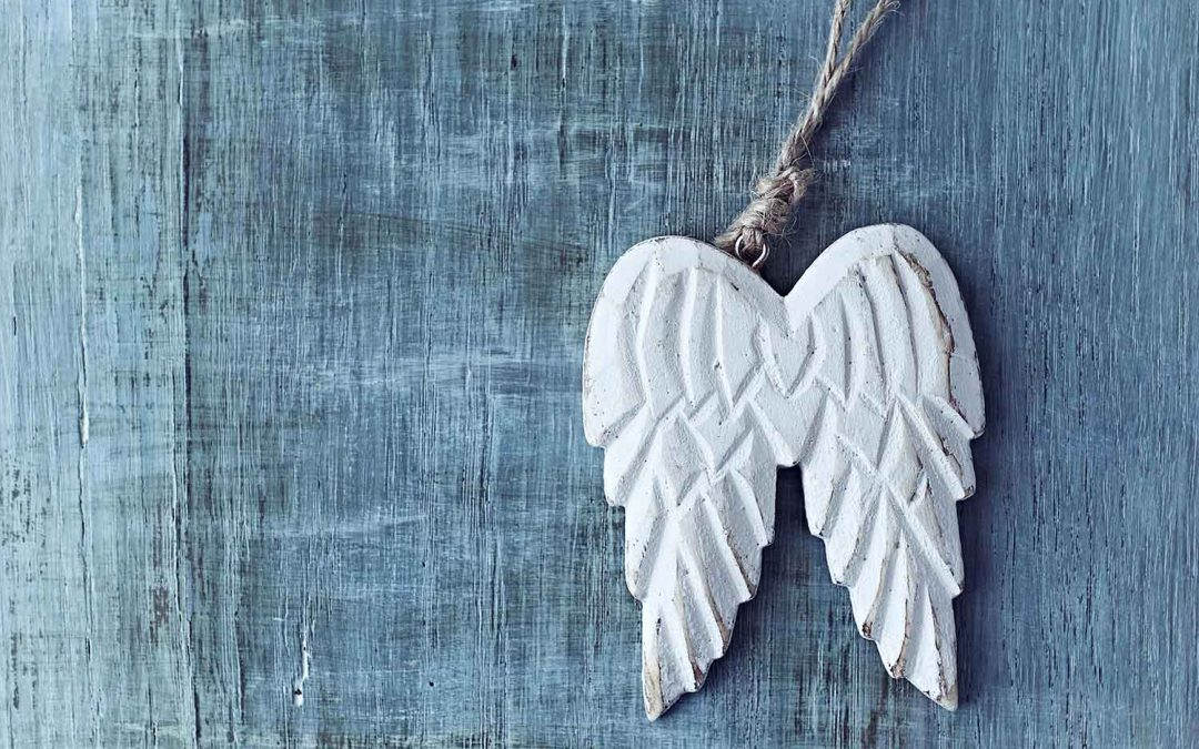 michell power angel wings